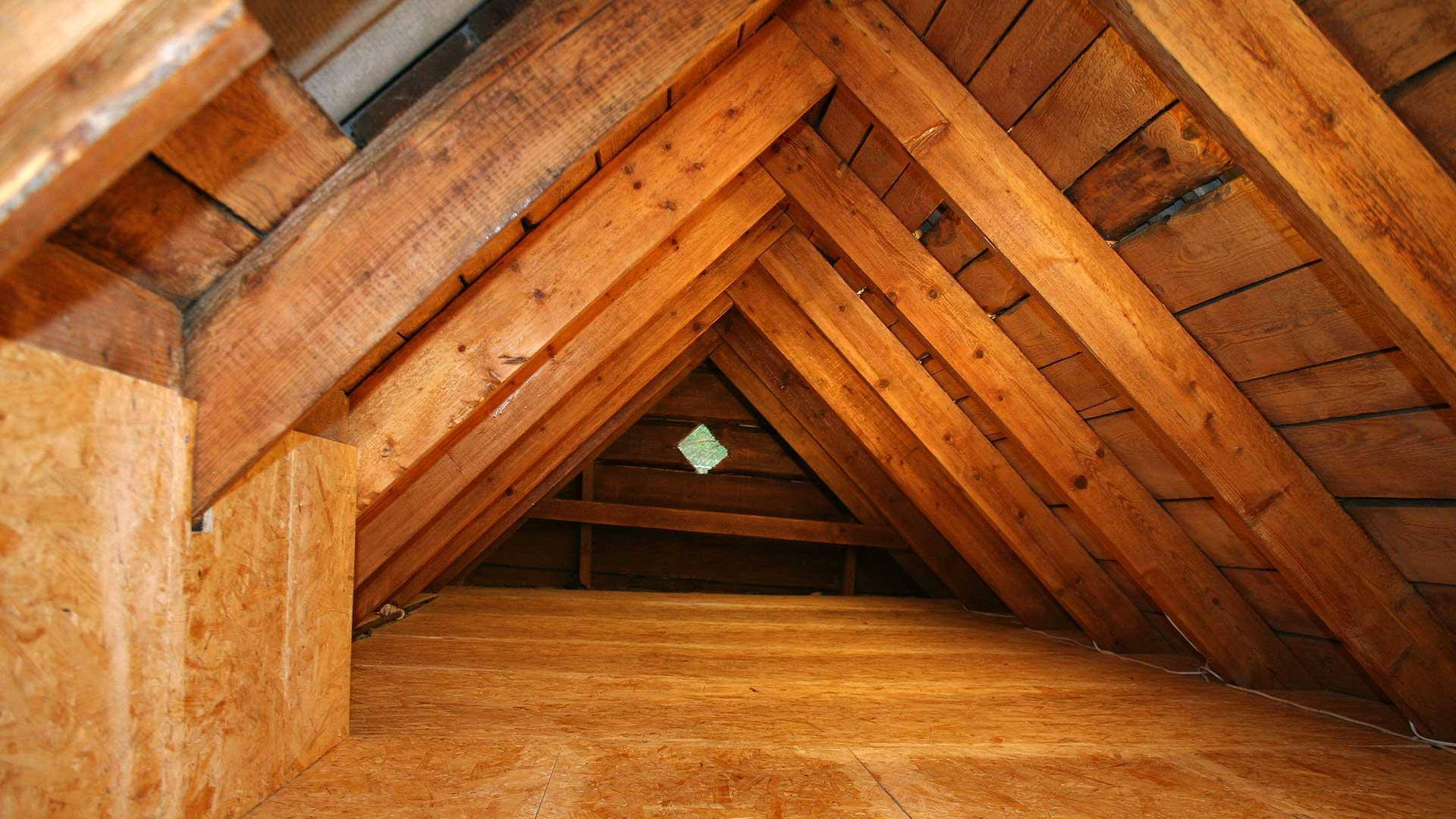 Crawl Space And Attic Cleaning Crawl Space Amp Attic Pro