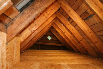 Crawl Space and Attic Cleaning